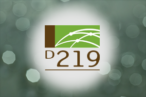 D219 logo graphic